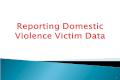 Reporting Domestic Violence Victim Data