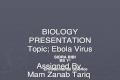 Ebola virus history