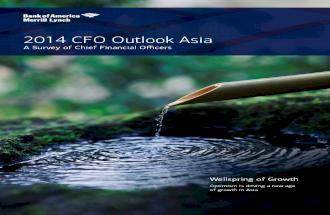 Bank of America Merrill Lynch CFO Outlook 2014 Asia