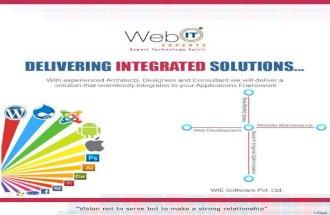 Wie software company_profile (1)